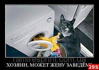 Магниты на холодильник, Юмор 295