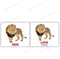 """Карточки  мини русско-английские """"Дикие животные/Wild animals"""""""
