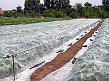 Агроволокно Premium-Agro белое (19 г/м2, 4,2х100 м), фото 10