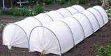 Агроволокно Premium-Agro белое (19 г/м2, 4,2х100 м), фото 8