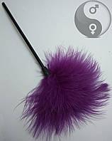 Сексуальная перьевая метелочка фиолетовая(пушок)