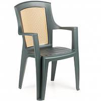Пластиковое кресло Viola Wood