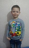 Реглан красивый для мальчика 104-128 Турция