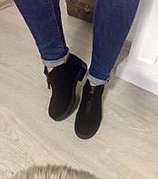 Женские короткие демисезонные ботинки натуральная замша, внутри шерсть, на низком ходу
