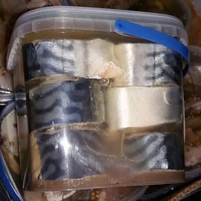 Скумбрия стейки в рассоле с маслом в ведре 1 кг, фото 2