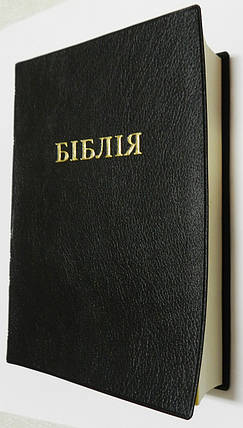 Біблія, 13х21 см, чорна, фото 2