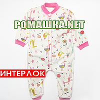 Человечек (слип, спальник) для сна р. 98 спальный демисезонный комбинезон ИНТЕРЛОК 100% хлопок 3417 Розовый