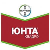 Юнта Квадро т.к.с. - протравитель, (5 л), Bayer CropScience AG (Байер КропСаенс), Германия