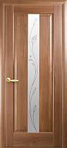 Межкомнатные двери Новый Стиль Премьера стекло с рисунком, фото 2