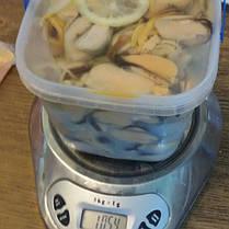 Мидии в специях и с лимоном ВЕДРО 1 кг, фото 3