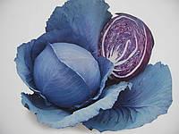 21335/06 F1 - капуста краснокочанная, 10 000 семян, Nasko Украина