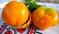 Гелиос - перец сладкий, 10 000 семян, Nasko Украина