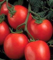 Рио Гранде - томат детерминантный, 500 гр, Agri Saaten (Агри Зааден), Германия
