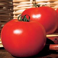 Супернова F1 (Каста) - томат детерминантный, 1 000, Clause Франция