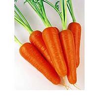 Абако F1 - морковь (фракция 1,8 - 2,0), 1 000 000 семян, Seminis (Семинис), Голландия
