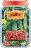 Семена драже Огурец Цезарь F1 (45-55 шт)