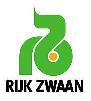 Пушма F1 - гибрид белокочанной капусты,калибр.1000 семян, Rijk Zwaan (Рийк Цваан), Голландия