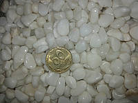 Грунт для аквариума галька белая 5-10мм