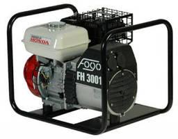 Бензиновый генератор Fogo FH 3001