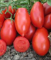 ЦРХ 71111 F1 (CRX 71111 F1) - томат детерминантный, 10 000 семян, Agri Saaten (Агри Заатен) Германия