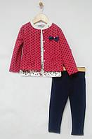 Wanex Комплект для дівчинки Жакет+лосини+батнік р86-116 малиновий гррошок