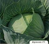 Капуста середня Бронко F1 100 насіння, фото 2