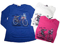 Модные регланы лонгсливы на девочку  р-ры 122-140,  Венгрия Glo-story GCX-7610