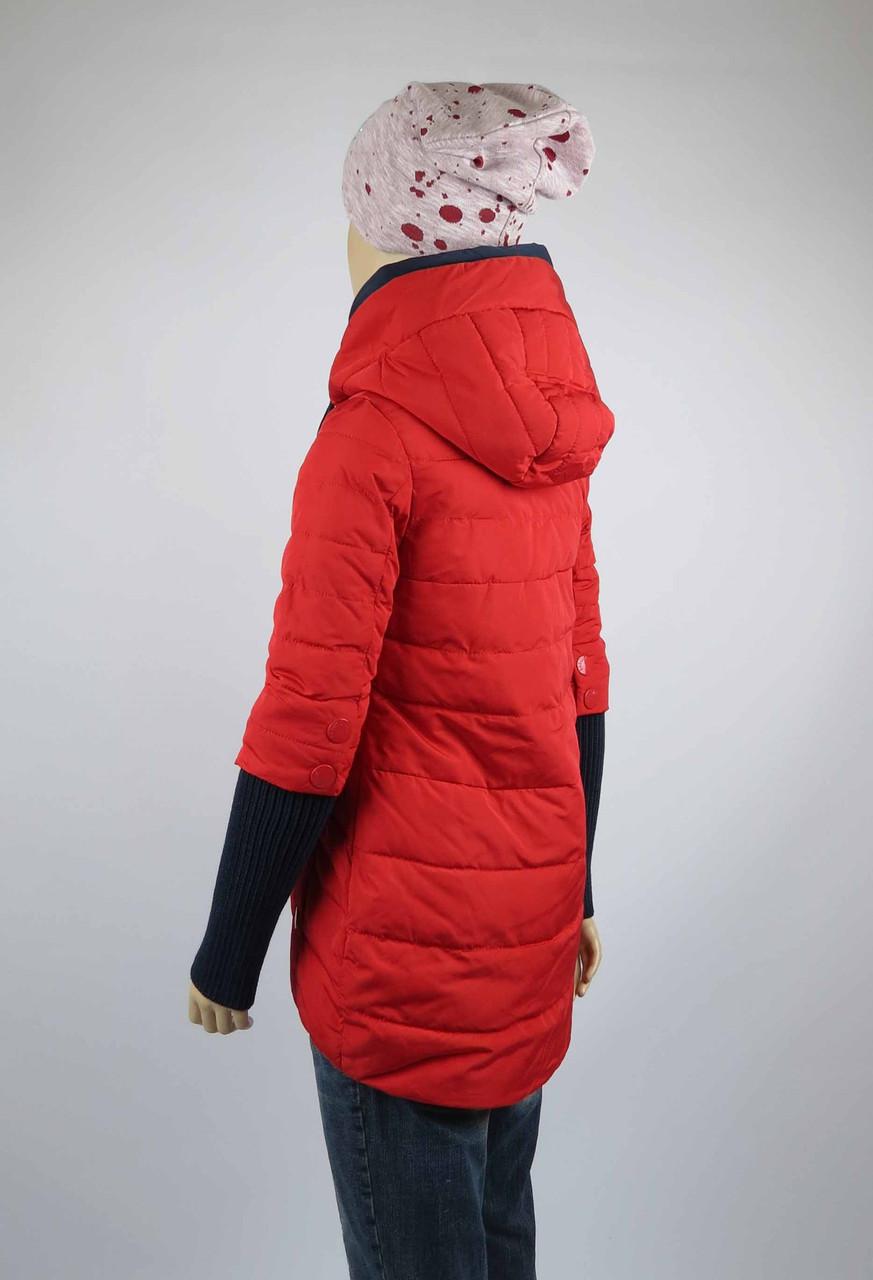 Куртка весна-осень, код 8624, размеры 140-164 (10 лет и старше) , цвет кр, фото 3