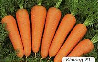 Морковь Каскад F1 100 000 семян