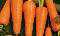 Морковь Канада F1 25 000 семян (1,6-1,8)