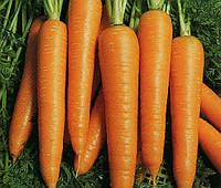 Морковь Вита Лонга 50 грамм