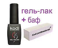 Гель-лак Коди, Kodi, Gel Polish, 8 ml+БАФ, вся палитра цветов.
