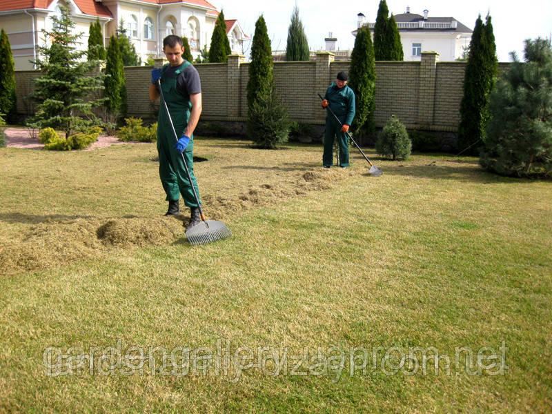 Комплексный уход за садом (Киев). Цена fc3254a24fdcd