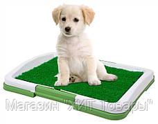 Удобства для вашего четвероного члена семьи. Лоток для собак Puppy Potty Pad , фото 3