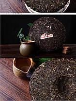 Чай Шен Пуэр, 5 лет, 357 г, фото 3