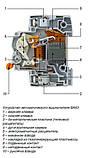 Автоматический выключатель 11207 ВА63 1Р 40А, фото 2