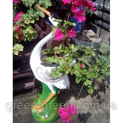 Цапля цветочник