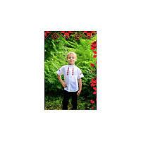 """Рубашка школьная с вышивкой для мальчика """"Зіронька ТМ""""  Украина (3030)"""