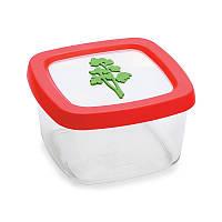 Пластиковый контейнер для хранения продуктов (унивесальный) Snips 0.5 л