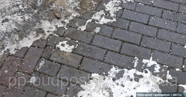 Догляд за тротуарною плиткою в Киеві