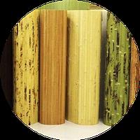О бамбуковых обоях