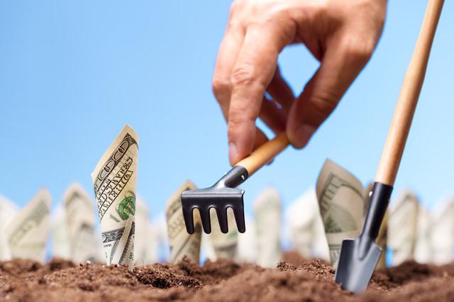 Дотации аграриям: животноводы обозначили, на что должны пойти деньги