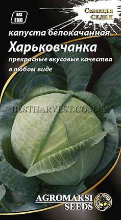 """Семена капусты белокочанной """"Харьковчанка"""" 1 г, фото 2"""
