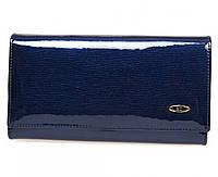 Стильный лаковый кожаный кошелек ST в синем цвете с блоком для кредитных карт (15102)