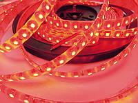 Светодиодная лента стандарт 2835-120 5-6 Лм IP65 в силиконе Красный