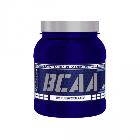 Fit Whey BCAA 500 g