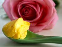 Антивозрастной крем матирующий Лилия и роза