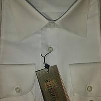 Белая классическая рубашка ENRICO (размеры 39.40.41.42.43.45.46)