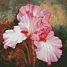 Вышивание камнями Алмазная мозаика Розовый ирис (DM-030) 40 х 40 см, фото 2