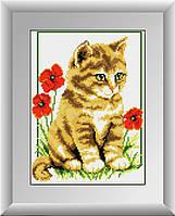 Рисование камнями на холсте Dream Art Котёнок в маках (полная зашивка, квадратные камни) (DA-30142) 23 х 30 см